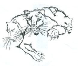 School Mascot-Panthers