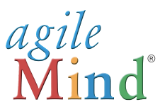 Agile Mind Assessment